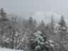 最高到達点から見えた温泉ヶ岳