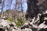 大岩下の岩小屋付近