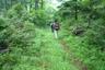 中央稜へ続く林道を離れて南稜の取付へ