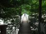 不動沢の吊橋