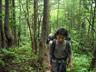 奥又白谷右岸の林をいく