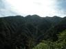 右奥の熊倉山から左へ落ちる小幡尾根