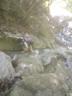 2段10m滝を登る
