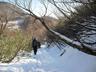 白馬尻近くになって雪が出てきた