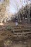 大倉尾根の階段始まる