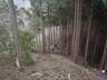 林業用の尾根を下ります