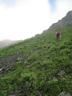 不安定な草付き砕石帯1