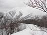 小出俣山への稜線