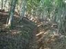 黒戸尾根登山道の状況