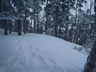 翌朝は吹雪